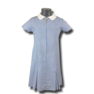 Gingham  Summer Dress with Zip Closure - Blue